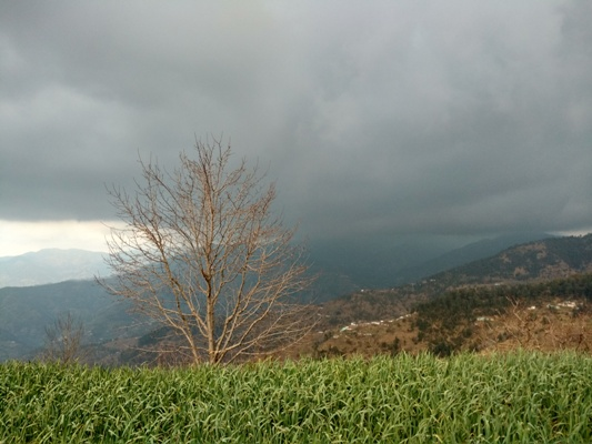 breathtaking view of the churdhar valley from the resort.