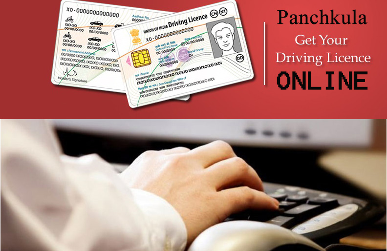 Apply Online for Driving License in Panchkula  Know the