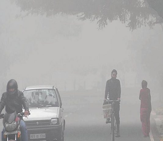 chandigarh-weather-coldest