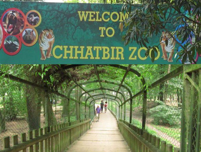 chhatbir-zoo