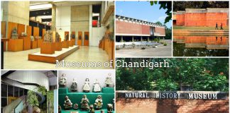 Museums-of-Chandigarh